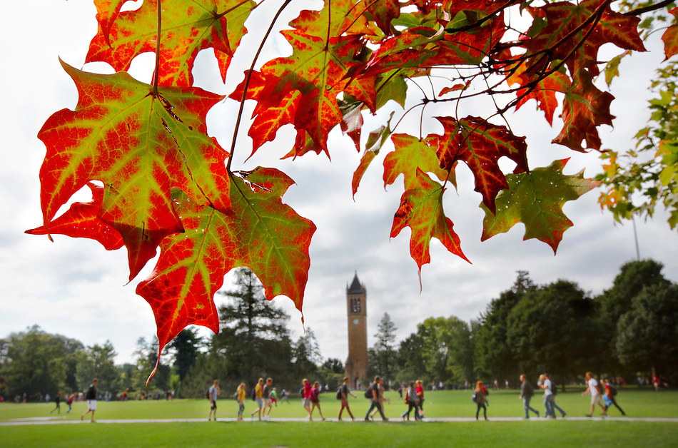 The first vivid signs of autumn are emerging on central campus this week. (Photo by Christopher Gannon/Iowa State University) (Christopher Gannon)