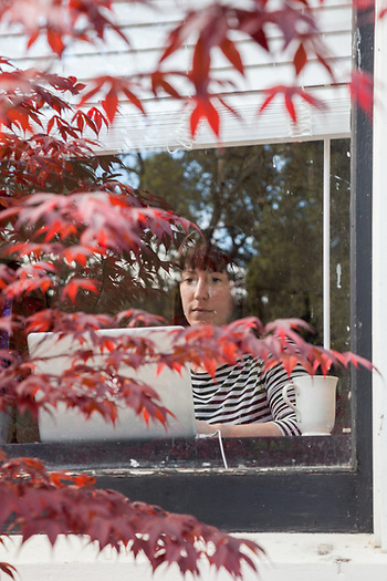 Book editor Sylvia Cottrell can be viewed plying her craft through the window in her home office overlooking Cedar Street in Calistoga, CA (Clark James Mishler)