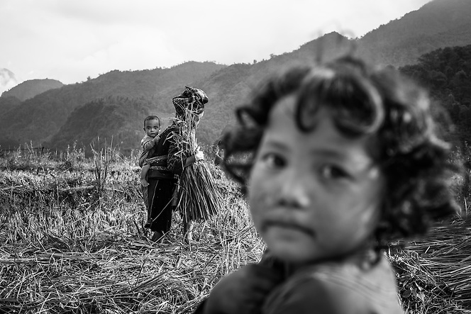 A girl looks on as an ethnic minority woman with baby in tow, works to harvest rice near Sapa, northern Vietnam. (Quinn Ryan Mattingly)