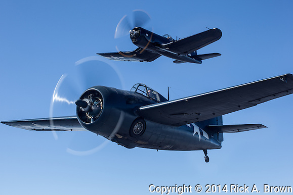 Chance-Vought F4U-7 Corsair and FM-2 Wildcat of the Erickson Aircraft Collection. (Rick A. Brown)