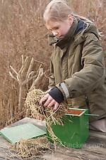 Nistkasten, Mädchen, Kind reinigt Vogel-Nistkasten und entnimmt altes Nistmaterial (Frank Hecker)