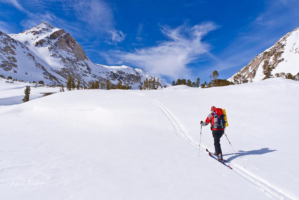 Backcountry skier under Piute Pass, John Muir Wilderness, Sierra Nevada Mountains, California USA (Russ Bishop/Russ Bishop Photography)