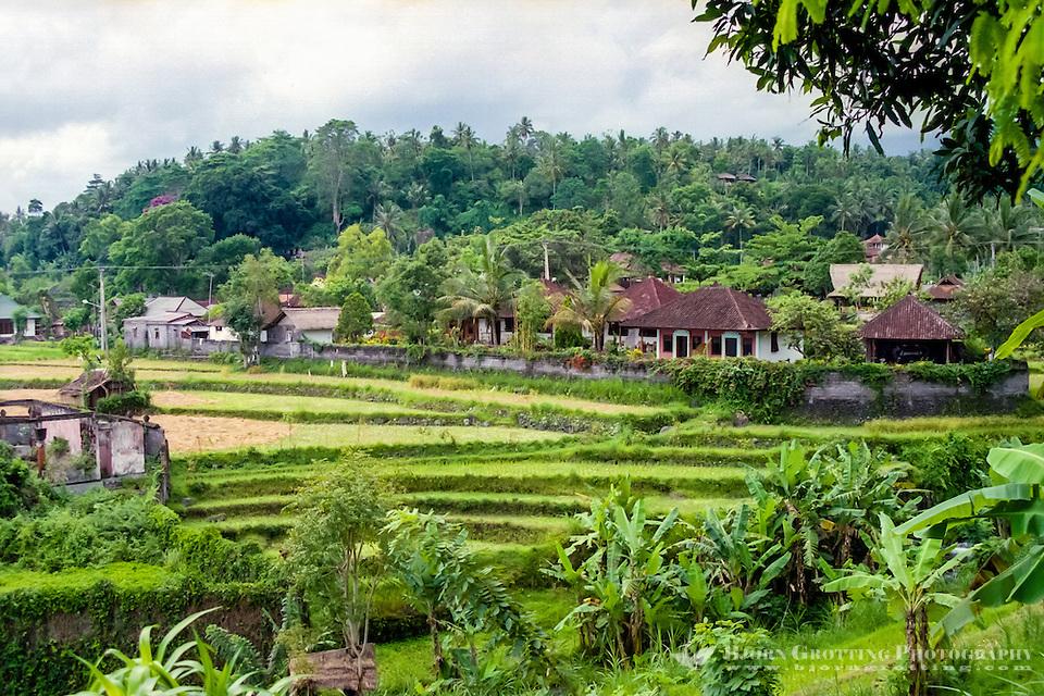 Bali, Karangasem, Tirta Gangga. The small Tirta Gangga village is situated among fertile ricefields. (Photo Bjorn Grotting)
