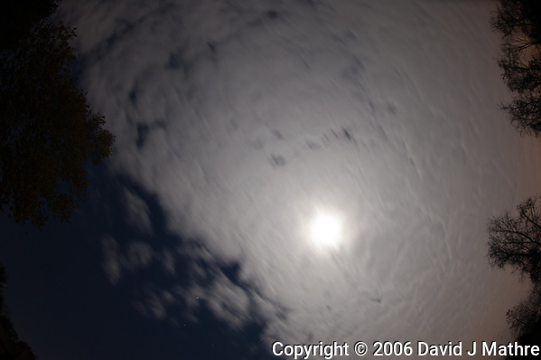 Moon behind a cloud layer blocking the night sky. Image taken with a Nikon D2xs camera and 10.5 mm f/2.8 fisheye lens (ISO 100, 10.5 mm, f/2.8, 15 sec). (David J Mathre)