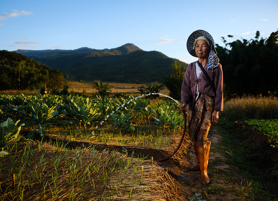 KYAING TONG, MYANMAR - CIRCA DECEMBER 2017: Portrait of farmer woman around Kyaing Tong watering her garden. (Daniel Korzeniewski)