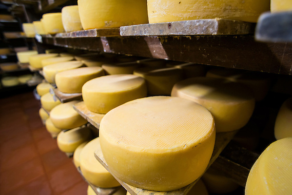 clearfield cheese company essay The borden company, appellant, v clearfield cheese co, inc, a pennsylvania  corporation, 369 f2d 96 (3d cir 1966) case opinion from the us court of.