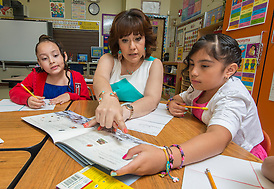 Sharon Samuel discusses life cycles with her second graders at J.P. Henderson Elementary School, May 16, 2014. (Dave Einsel / Houston ISD)