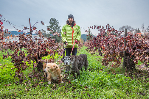 """""""My family started their olive business in the 1980's and  I do sales for the company.   While it may appear that I am a crazy dog lady, I actually have a life.""""  -Katy Kyriacopoulos walks with her Greek rescue dogs, Rita and Diesel, on Grant Stree in Calistoga. (Clark James Mishler)"""