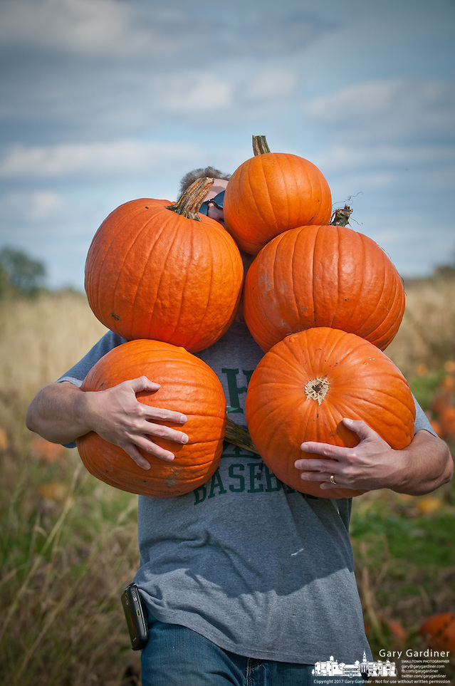 13- Customers carry armloads of pumpkins from a patch selling the fall staple at a single price for all you can carry. (Gary Gardiner/SmallTown Stock)