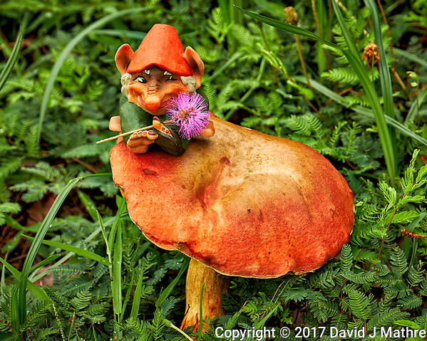 Troll with a purple wildflower on a big mushroom. Image taken with a Fuji X-T2 camera and 100-400 mm OIS lens (ISO 200, 138 mm, f/5.6, 1/170 sec). (David J Mathre)