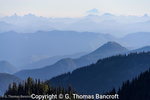 Mt Baker rises above the Cascades north of Mt Rainier. The photograph was taken from Sourdough Ridge in Mt Raineir national Park. (G. Thomas Bancroft)