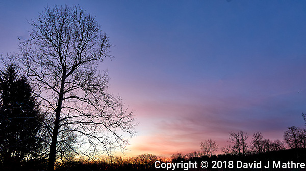 Winter Dawn Sky and Clouds in New Jersey from My Backyard. Image taken with a Leica T camera and 11-23 mm lens (ISO 100, 11 mm, f/8, 1/30 sec). (David J Mathre)