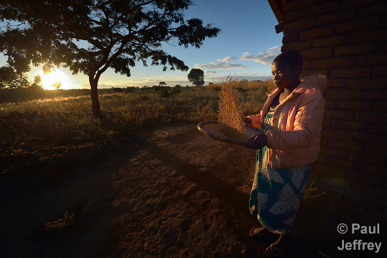 Mektie Nkuna winnows corn in Chibamu Jere, Malawi. Pregnant with her second child, Nkuna and other women in the village get support from the Maternal, Newborn and Child Health program of the Livingstonia Synod of the Church of Central Africa Presbyterian. (Paul Jeffrey)