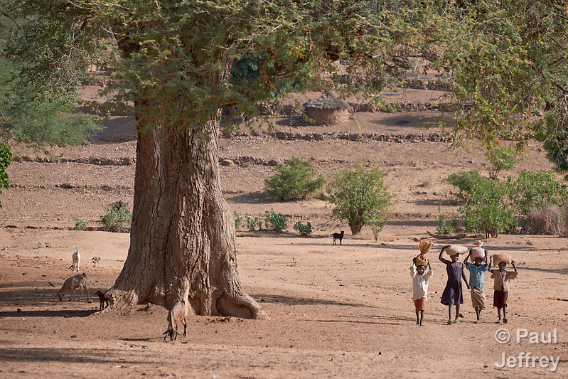 Children walking in Kauda, a village in the Nuba Mountains of Sudan. The area is controlled by the Sudan People's Liberation Movement-North, and frequently attacked by the military of Sudan. The Catholic Church sponsors schools and health care facilities throughout the war-torn region. (Paul Jeffrey)