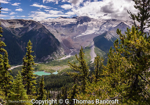 Outflow from the Emmons Glacier forms the White River. (G. Thomas Bancroft)