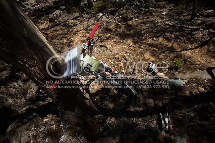 Team Swisse Active (Jarad Kohlar and James Pretto). Adventure Racing. Swisse Mark Webber Challenge 2013. Tasmania, Australia. 30/11/2013. Photo By Lucas Wroe (Lucas Wroe)