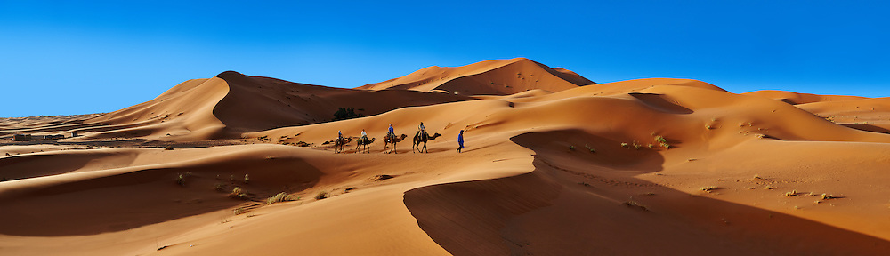 Camel rides on the Sahara sand dunes of erg Chebbi, Morocco, Africa (Paul E Williams)