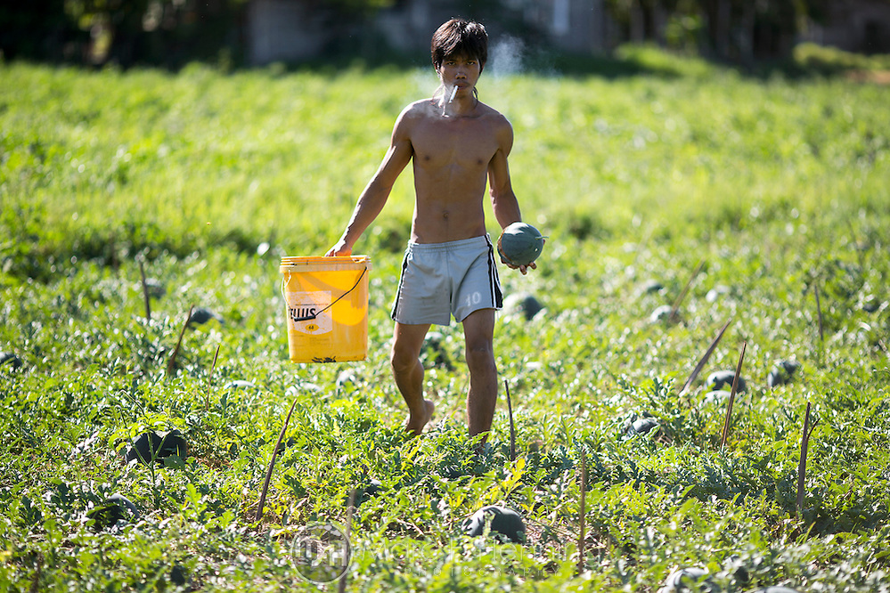 Photo by Marc F. Henning A Filipino laborer works in a pakwan (watermelon) field April 28, 2014, in Mansalay, Oriental Mindoro, Philippines. (MARC F. HENNING/MARC F. HENNING PHOTOGRAPHY)