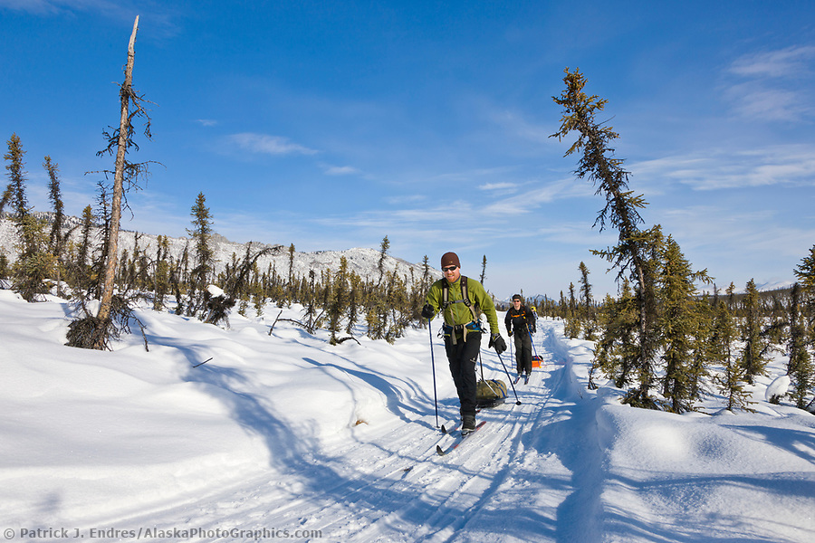 Cross country skiing in the White Mountains National Recreation Area. (Patrick J. Endres / AlaskaPhotoGraphics.com)