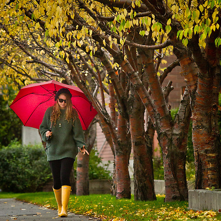 Holly Furman with her umbrella near the Pioneer Home on I street, Anchorage. (Clark James Mishler)