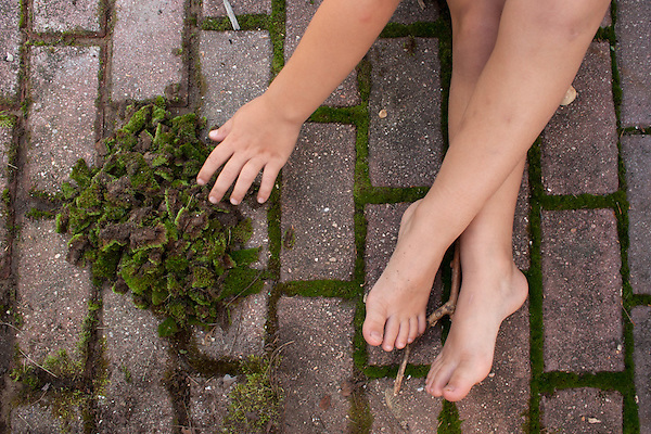 My younger son created and assigned himself the job of clearing the moss out between our patio bricks. (Kristen Schmid)
