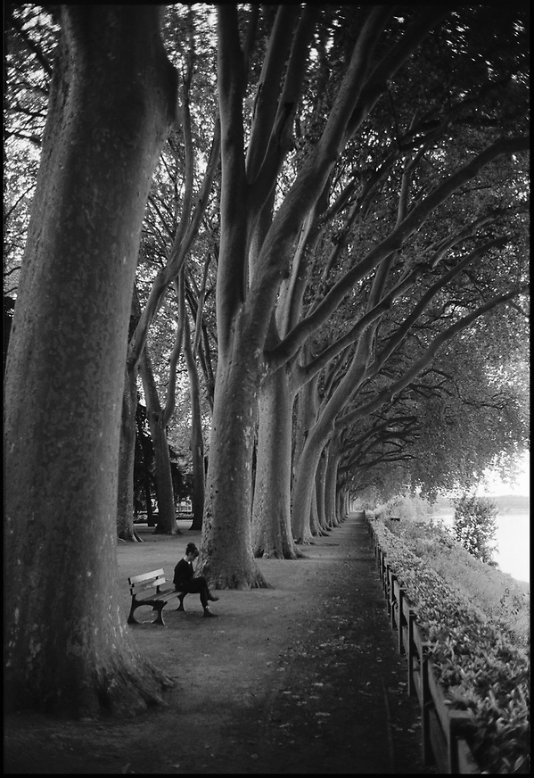Treeline, Chinon, France – Black & White Film Photography