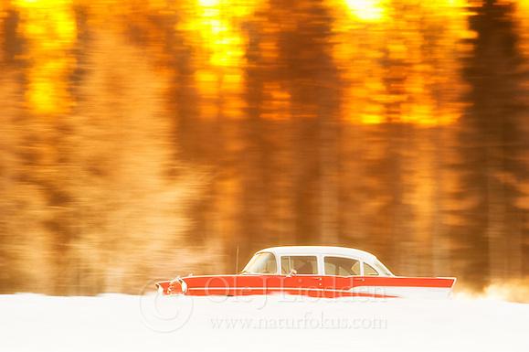 Cadillac in front of golden sunrise, Lappland, Finland (Ole Jørgen Liodden)