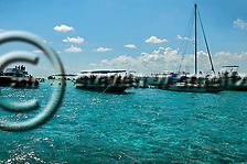 Stingray City, Grand Cayman (Steven Smeltzer)