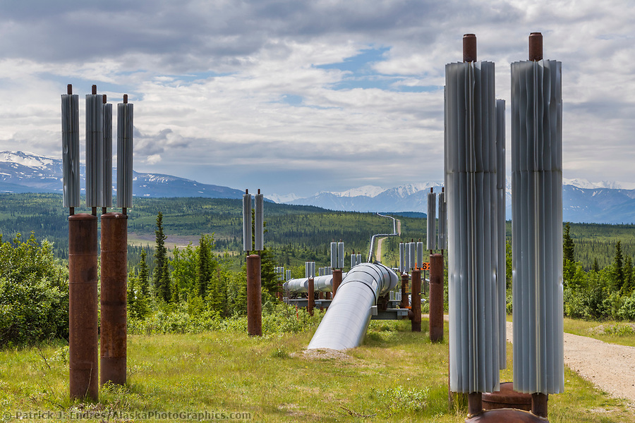 Trans Alaska oil pipeline is buried whenever possible, but permafrost soil conditions require the pipeline to be above ground. Metal fins help dissipate heat and cold. (Patrick J. Endres / AlaskaPhotoGraphics.com)
