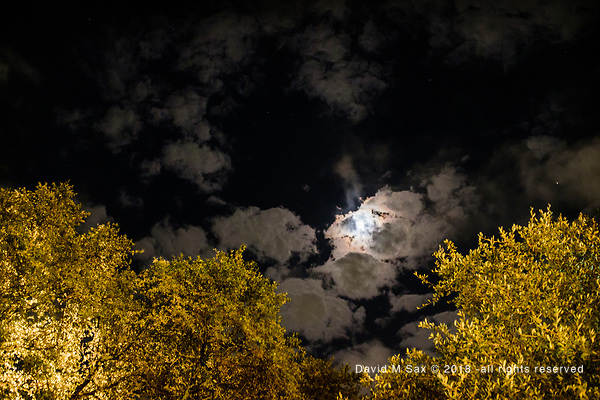 10.19.18 - The Sky at Night... (DAVID M SAX)
