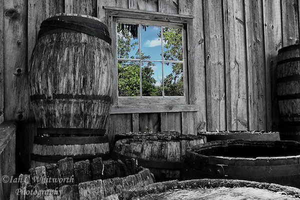 Old black and white whiskey barrels are around the window reflection of a new colourful day in Black Creek Pioneer Village in Toronto. (Ian C Whitworth)