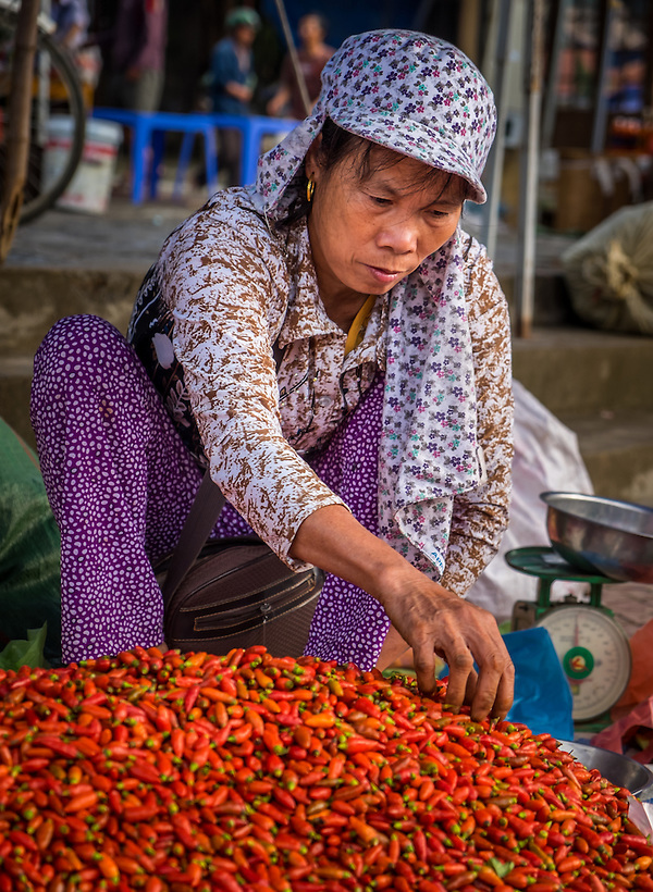 BAC HA, VIETNAM - CIRCA SEPTEMBER 2014:  Vietnamese woman picking red chili peppers at the  Bac Ha sunday market, the biggest minority people market in Northern Vietnam (Daniel Korzeniewski)