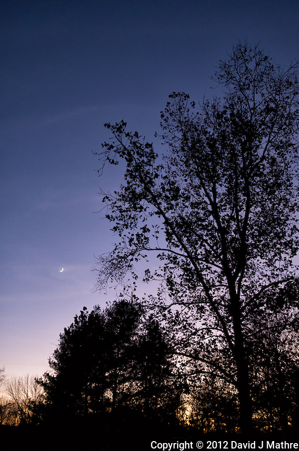 Late Fall Waxing Cresent Moon at Dusk. Image taken with a Leica X2 Camera (ISO 800, 24 mm, f/2.8, 1/60 sec) (David J. Mathre)
