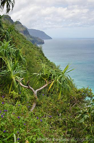 Na Pali Coast, Kauai, Hawaii (Martin Beebee Photography)