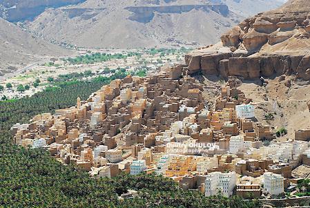 View to the town of Seiyun, Hadramaut, Yemen. (Dmitry Chulov)