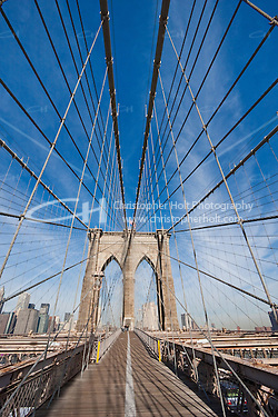 brooklyn bridge - New York City in October 2008 (Christopher Holt LTD - LondonUK, Christopher Holt LTD/Image by Christopher Holt - www.christopherholt.com)