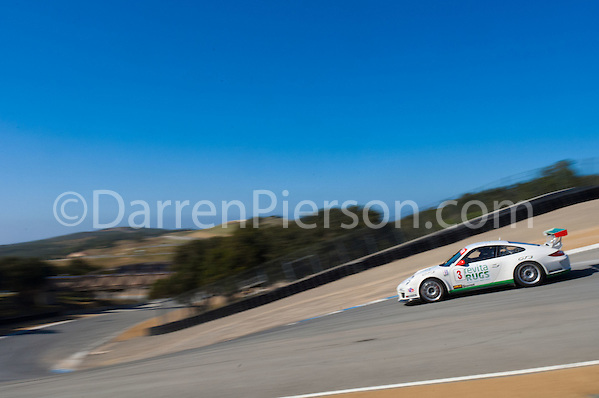 #3 Competition Motorsports Porsche GT3 Cup: Steve Goldman (Darren Pierson)