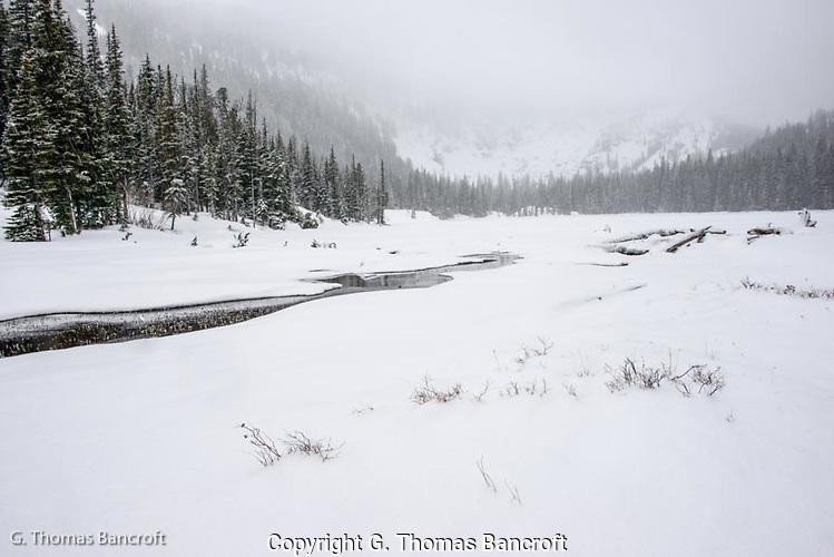 Lake Julius during a snow storm in Alpine Lakes Wilderness (G. Thomas Bancroft)