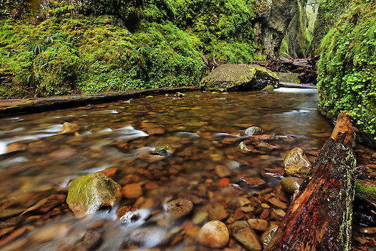 Oneonta Creek flowing out of entrance to Oneonta Canyon, Columbia River Gorge National Scenic Area, Oregon, USA (Brad Mitchell)