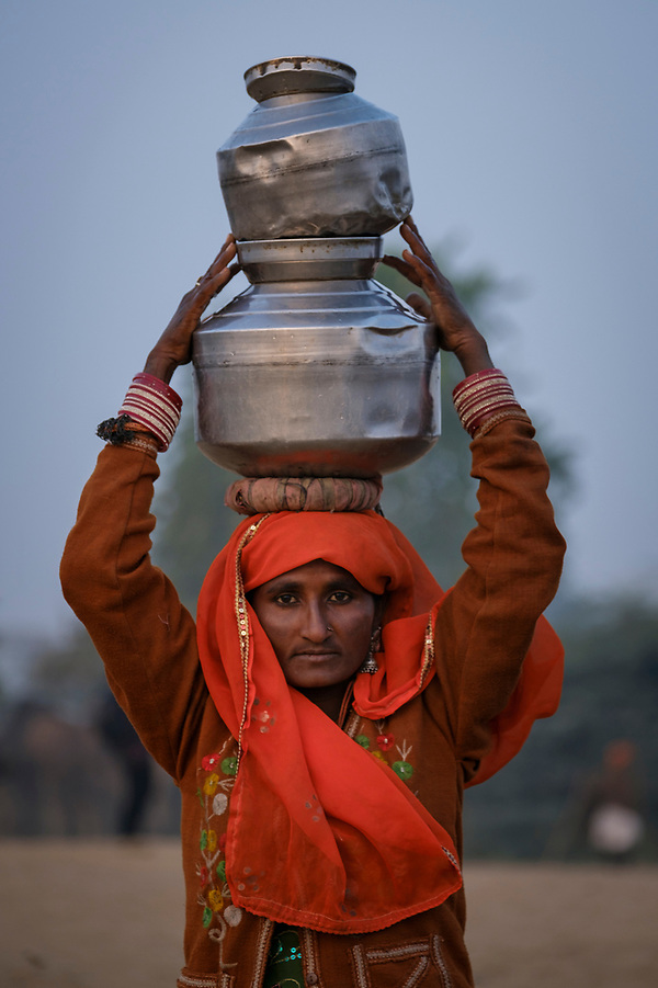 PUSHKAR, INDIA - CIRCA NOVEMBER 2016: Indian woman carrying water at Pushkar Camel Fair. It is one of the world's largest camel fairs. Apart from the buying and selling of livestock, it has become an important tourist attraction. (Daniel Korzeniewski)