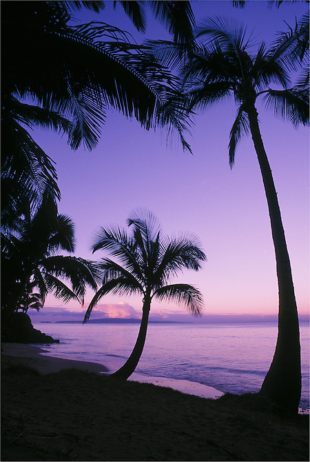 Palm trees and beach at dawn with Kahoolawe Island in distance; Kihei, Maui, Hawaii. (Greg Vaughn/© Greg Vaughn)