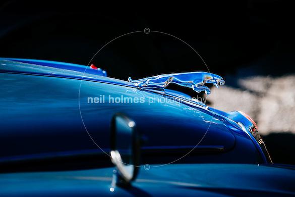 Humber Bridge, Hessle, East Yorkshire, United Kingdom, 26 April, 2015. Pictured: East Yorkshire Thoroughbred Car Club Pictured:  Jaguar (Neil Holmes)