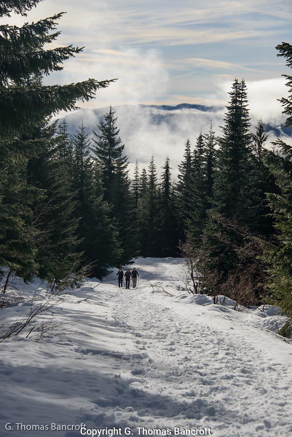 The sun started to poke through the clouds giving bright contrast to the landscape.  Fog continued to flow through the valley below Kendal Peak.  Snowshoers were enjoying the hike up the trail. (G. Thomas Bancroft)
