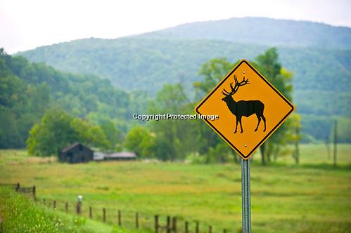 A sign warning of elk in Boxley Valley in Ponca, Arkansas near Jasper, Ar. (Beth Hall)