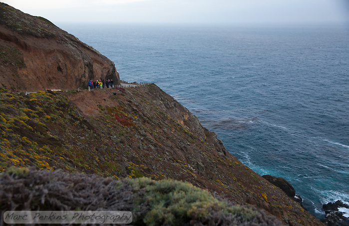 The docents broke our moon rise tour of Point Sur Light Station into two groups; I was in the first, and in this picture we're looking back at the second group taking a break on the road up to the top of the rock the station is located on.  The road to the top has no fence, and the edge steeply drops off to the ocean.  It'd be fun to walk on if there hadn't been gale force winds. (Marc C. Perkins)
