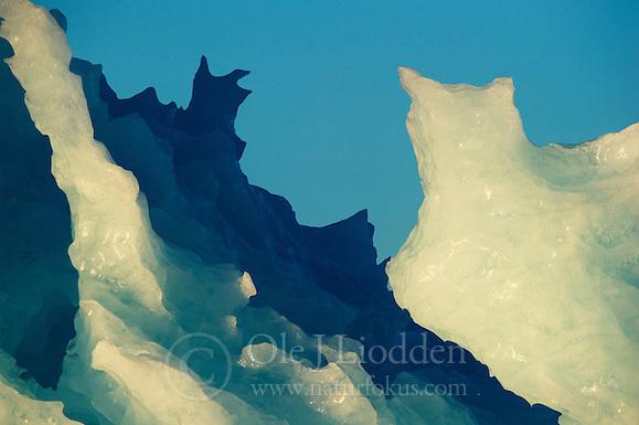 Iceberg in Svalbard