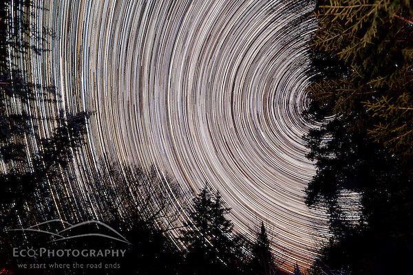 Star trails in the night sky above Little Lyford Pond Camps in Maine's Northern Forest. (Jerry and Marcy Monkman)