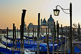 Venice gondolas in the late afternoon (Ian C Whitworth)