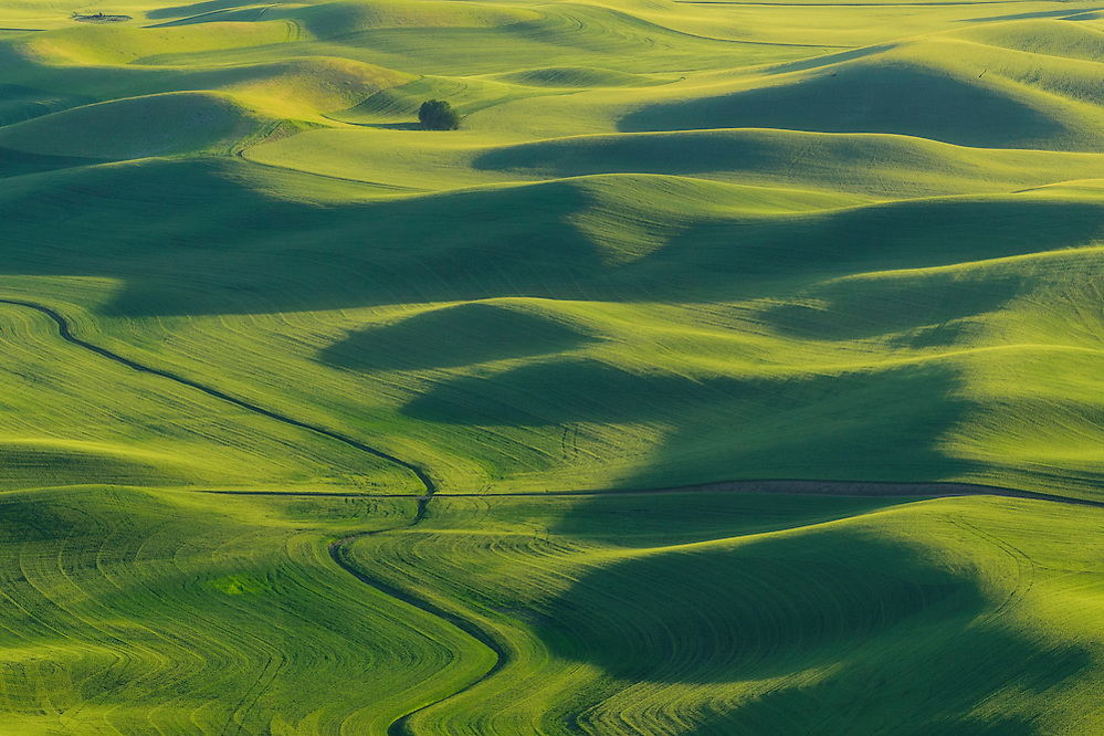 Palouse wheat fields from Steptoe Butte, Washington. (Greg Vaughn/© Greg Vaughn)