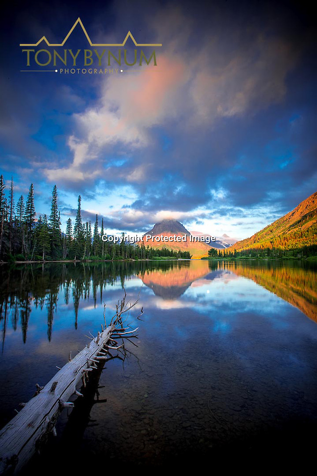 sinopah mountain sunrise two medicine lake glacier national park, montana (Tony Bynum)